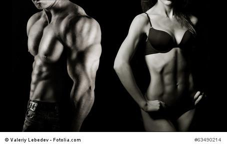 Alles über unsere Muskeln
